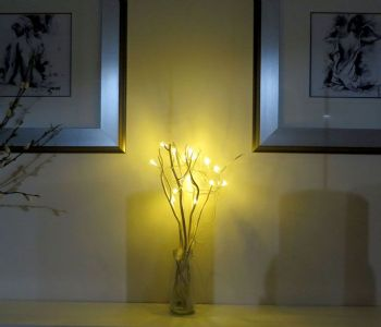 led willow triggs you can purchase here